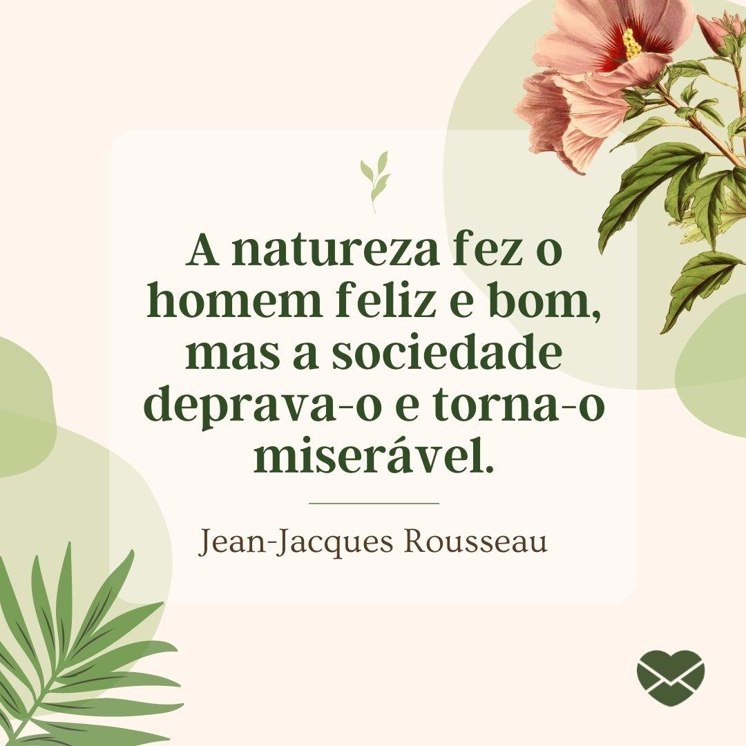 'A natureza fez o homem feliz e bom, mas a sociedade deprava-o e torna-o miserável.' - Frases sobre Natureza