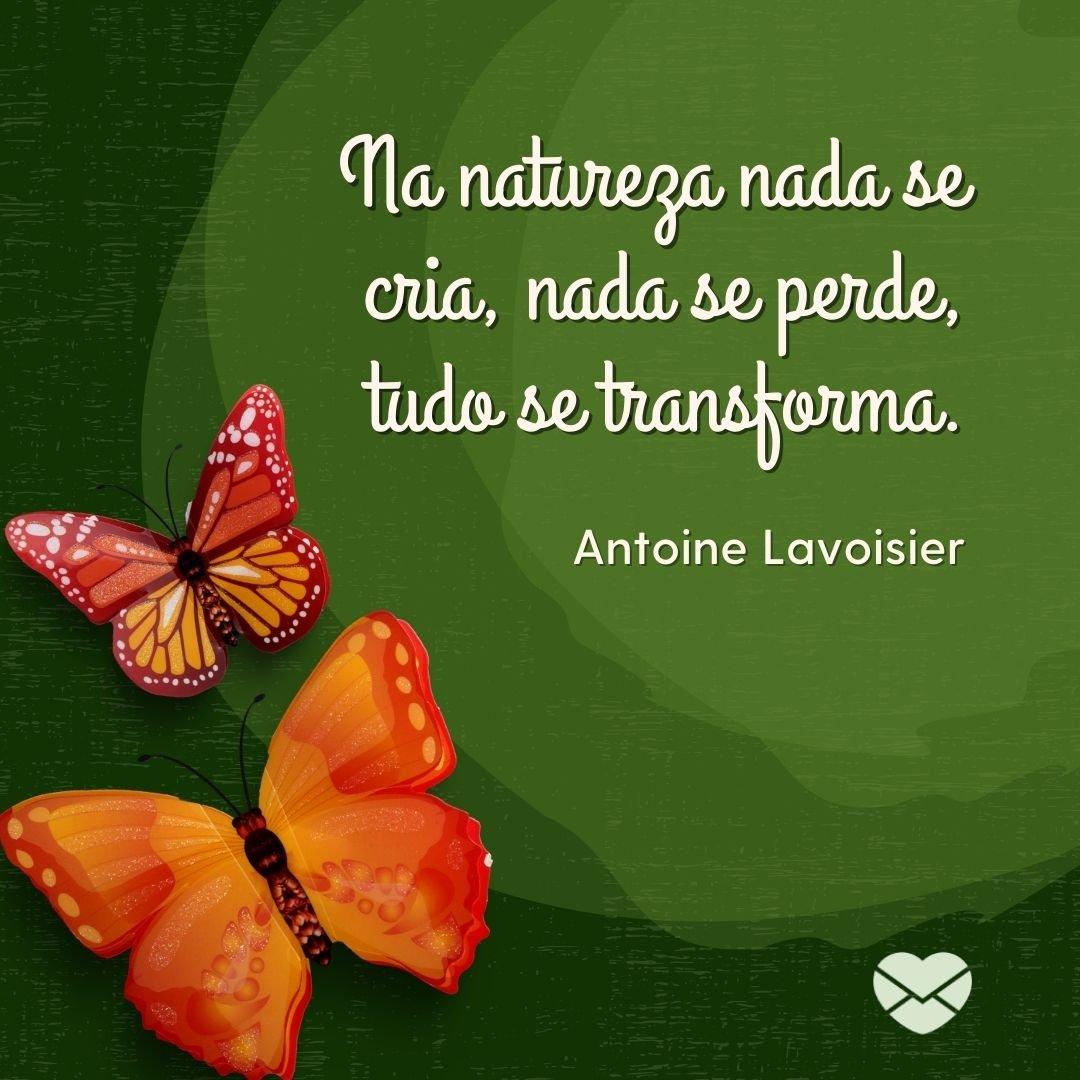 'Na natureza nada se cria, nada se perde, tudo se transforma.' - Frases sobre Natureza