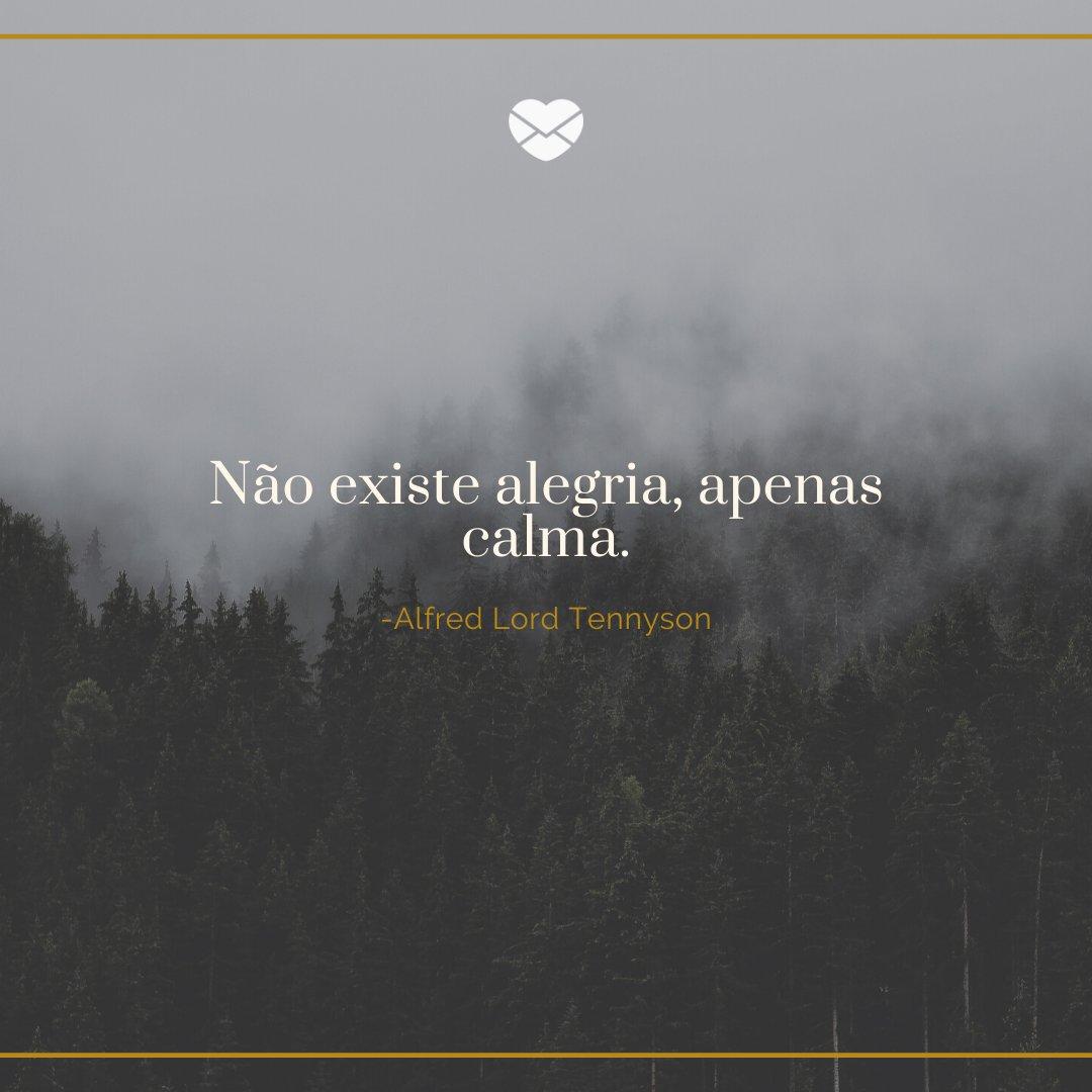 'Não existe alegria, apenas calma.' -Frases de Filósofos