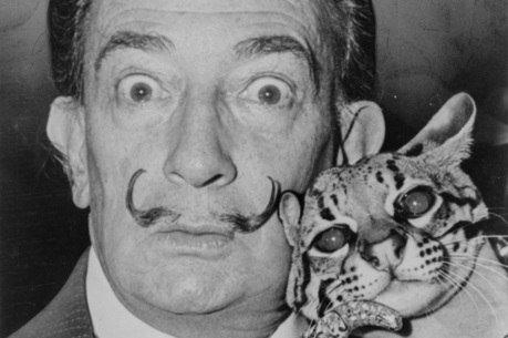 Homem segurando gato ao lado de seu rosto