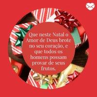 Frases Natalinas Uma época De Amor E Paz