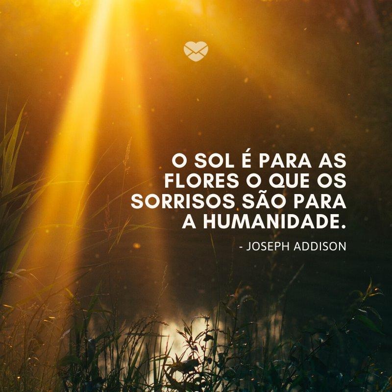 'O sol é para as flores o que os sorrisos são para a humanidade.' -Frases de Sol