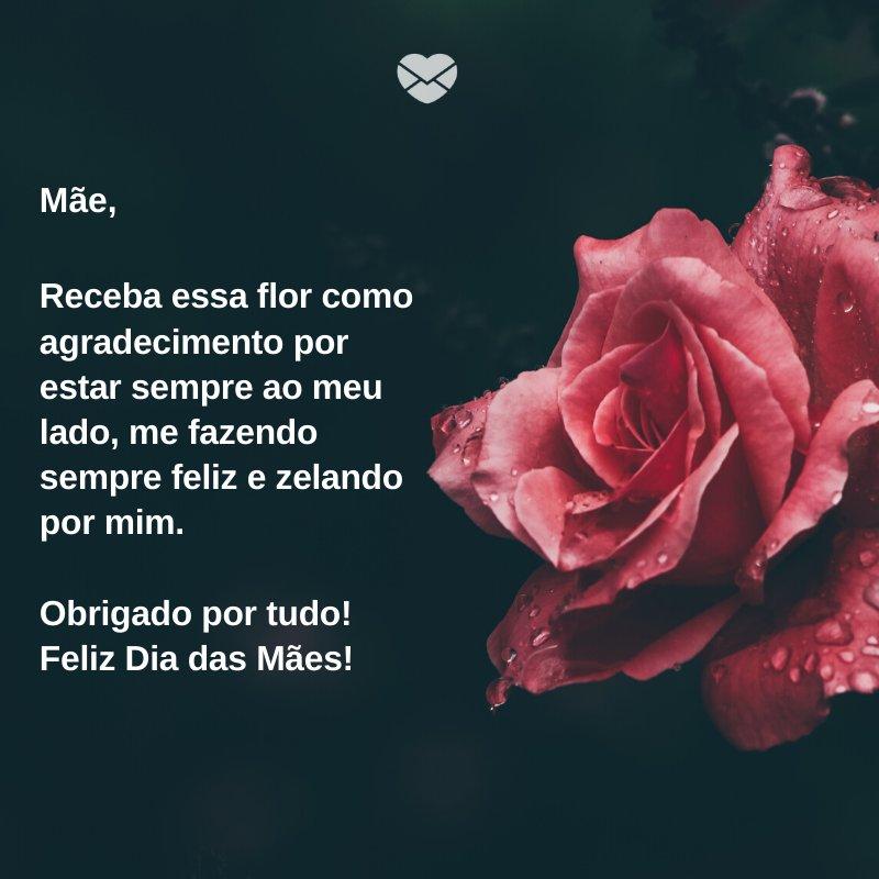 'Mãe,   Receba essa flor como agradecimento por estar sempre ao meu lado, me fazendo sempre feliz e zelando por mim.  Obrigado por tudo! Feliz Dia das Mães!' -Imagens de Dia das Mães