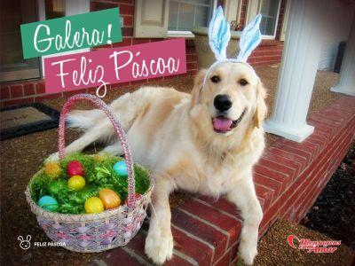 'Galera! Feliz Páscoa' - Frases de Páscoa