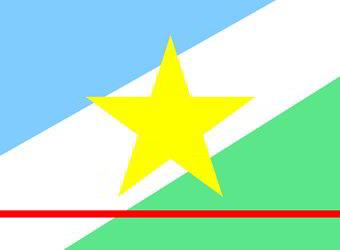 Bandeira do estado de Roraima