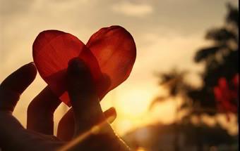 Fogo Da Paixão Frases Lindas De Amor Declarações Românticas