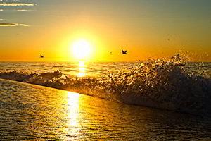 Resultado de imagem para frases de amanhecer lindas