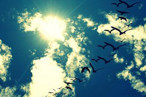 Frases Sobre Céu O Infinito Azul