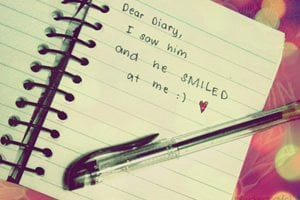 Querido Diário Minha Vida Toda Escrita