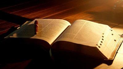 Frases Da Bíblia Dedique Se à Leitura Do Livro Sagrado
