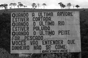 Dia Mundial Do Meio Ambiente Nossa Terra Nossa Casa