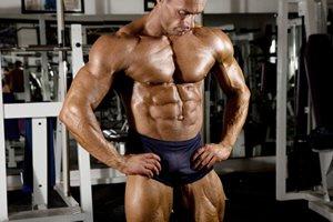 Frases De Treino E Musculação No Pain No Gain