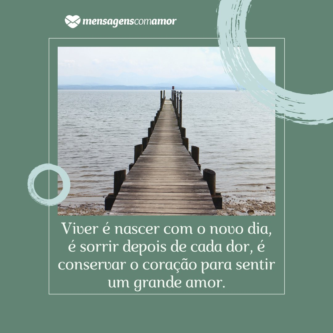 'Viver é nascer com o novo dia, é sorrir depois de cada dor, é conservar o coração para sentir um grande amor.' - Mensagens de Boa Tarde