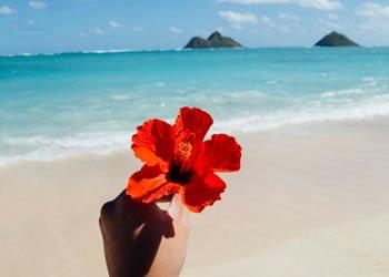 Leve Uma Vida Mais Leve Busque Sua Felicidade