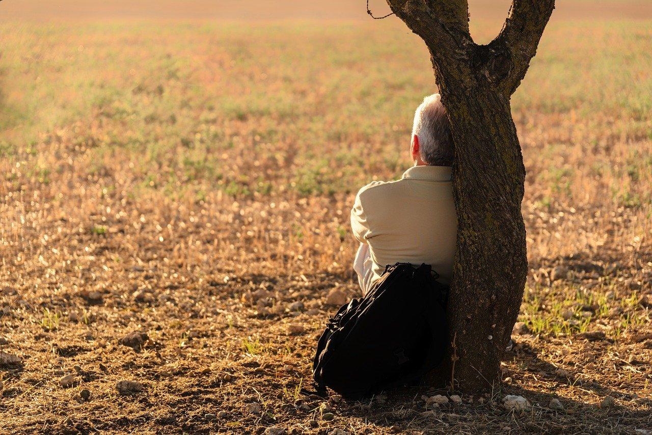 Homem idoso sentado em grama, apoiando as costas no tronco de uma árvore, em uma tarde ensolarada.