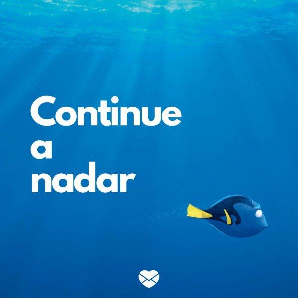 'Continue a nadar' -  Mensagens de incentivo a um amigo