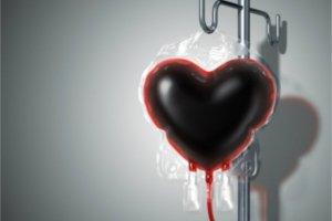 Frases De Incentivo Ao Doador De Sangue Doe Sangue Doe Vida