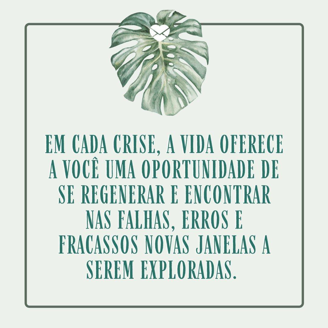 'Em cada crise, a vida oferece a você uma oportunidade de se regenerar e encontrar nas falhas, erros e fracassos novas janelas a serem exploradas.' - Frases para status