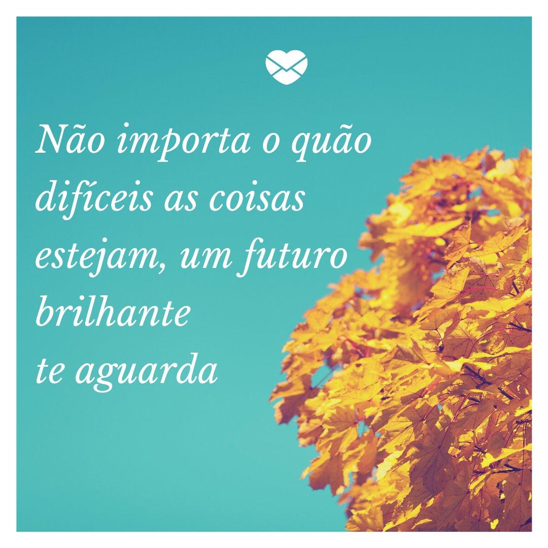 'Não importa o quão difíceis as coisas estejam, um futuro brilhante te aguarda' - Para acalmar o coração