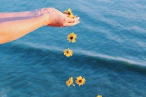 Vai Dar Tudo Certo Leve A Vida Com Esperança No Coração