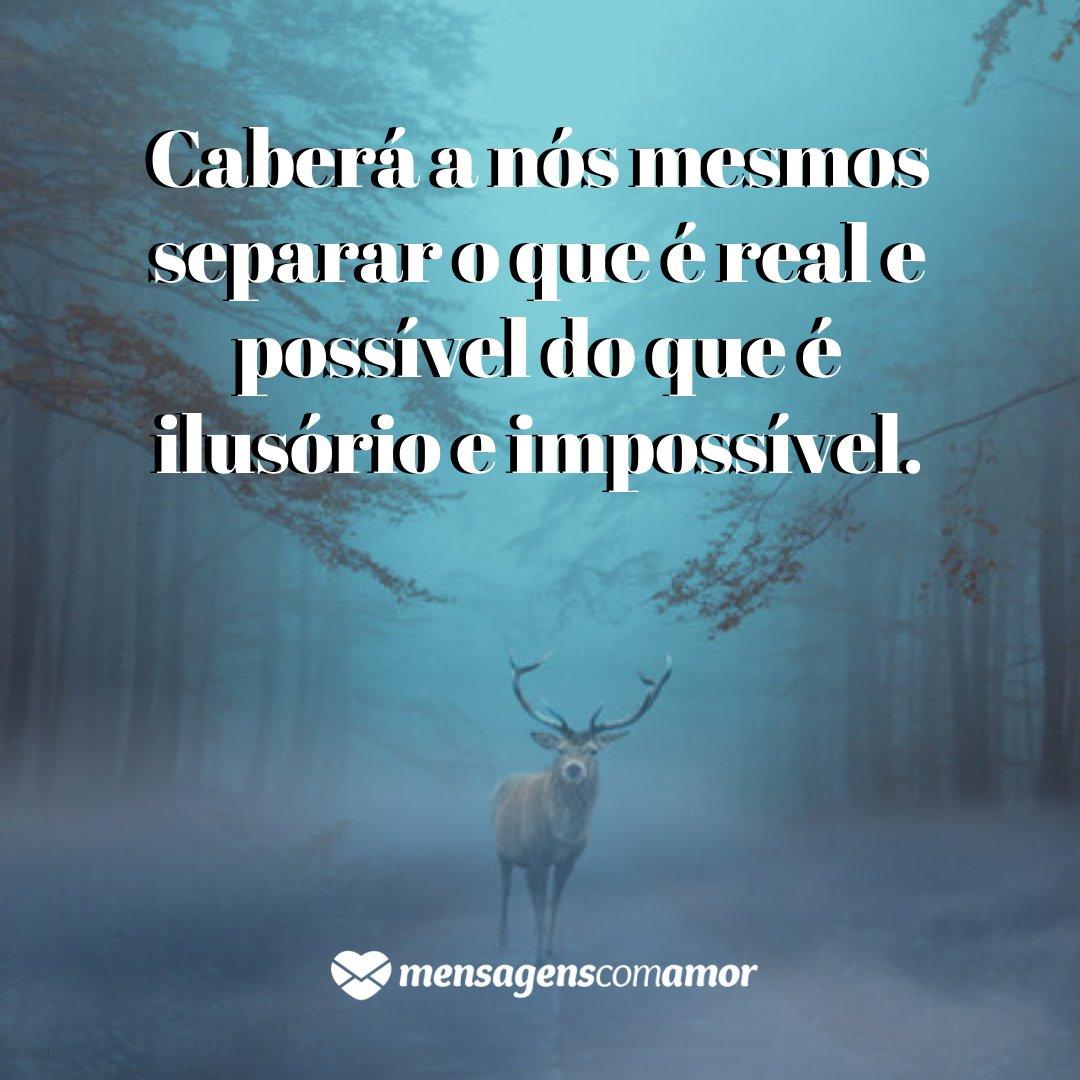 'Caberá a nós mesmos separar o que é real e possível do que é ilusório e impossível.' - Ano novo de novas vitórias