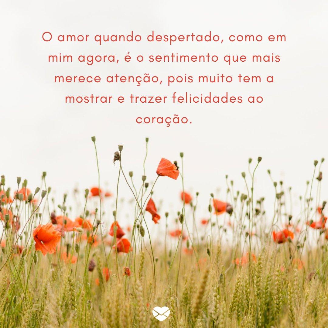 'O amor quando despertado, como em mim agora, é o sentimento que mais merece atenção, pois muito tem a mostrar e trazer felicidades ao coração.' -Que o nosso amor floresça