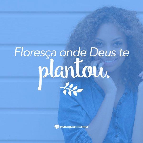 Florescer 9 Razões Pra Confiar No Amor De Deus Cristãs