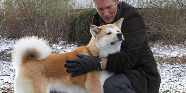 filme com richard gere e um cachorro