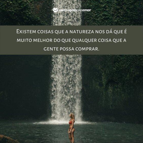 Legendas Para Fotos Em Cachoeiras Construa Memórias Com