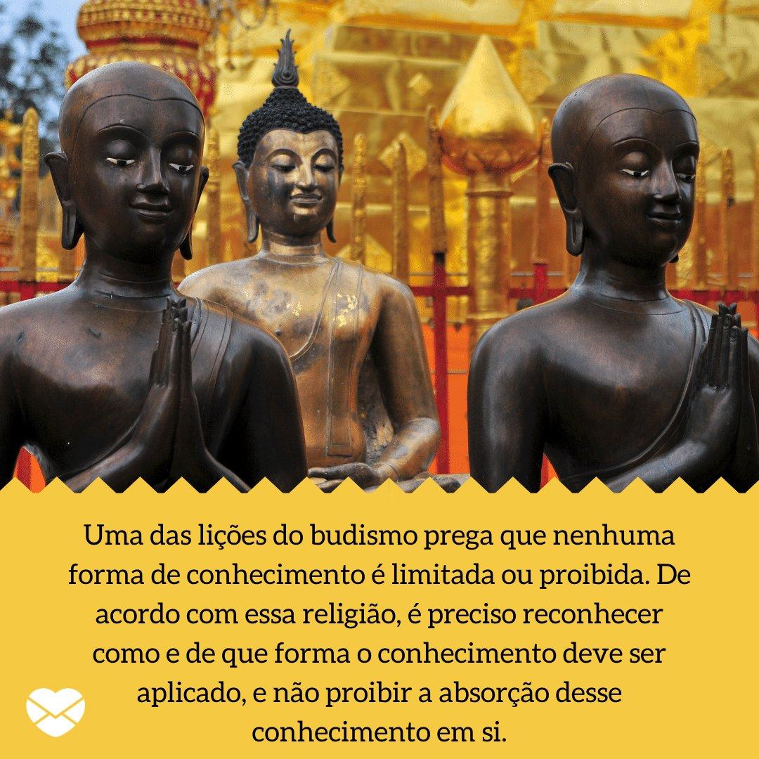 'Uma das lições do budismo prega que nenhuma forma de conhecimento é limitada ou proibida. De acordo com essa religião, é preciso reconhecer como e de que forma o conhecimento deve ser aplicado, e não proibir a absorção desse conhecimento em si. - Lições do Budismo