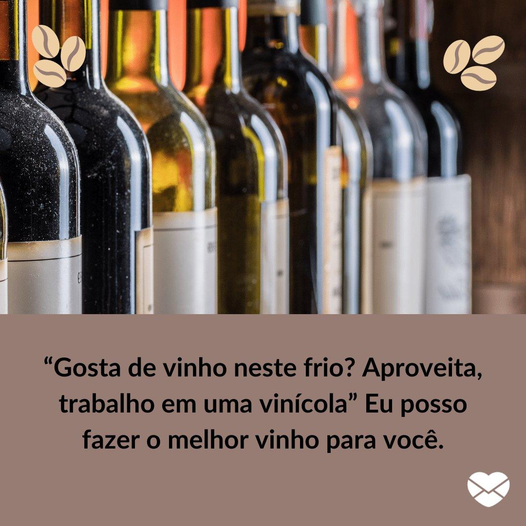 """""""Gosta de vinho neste frio? Aproveita, trabalho em uma vinícola"""" Eu posso fazer o melhor vinho para você. -  Cantadas para frio"""