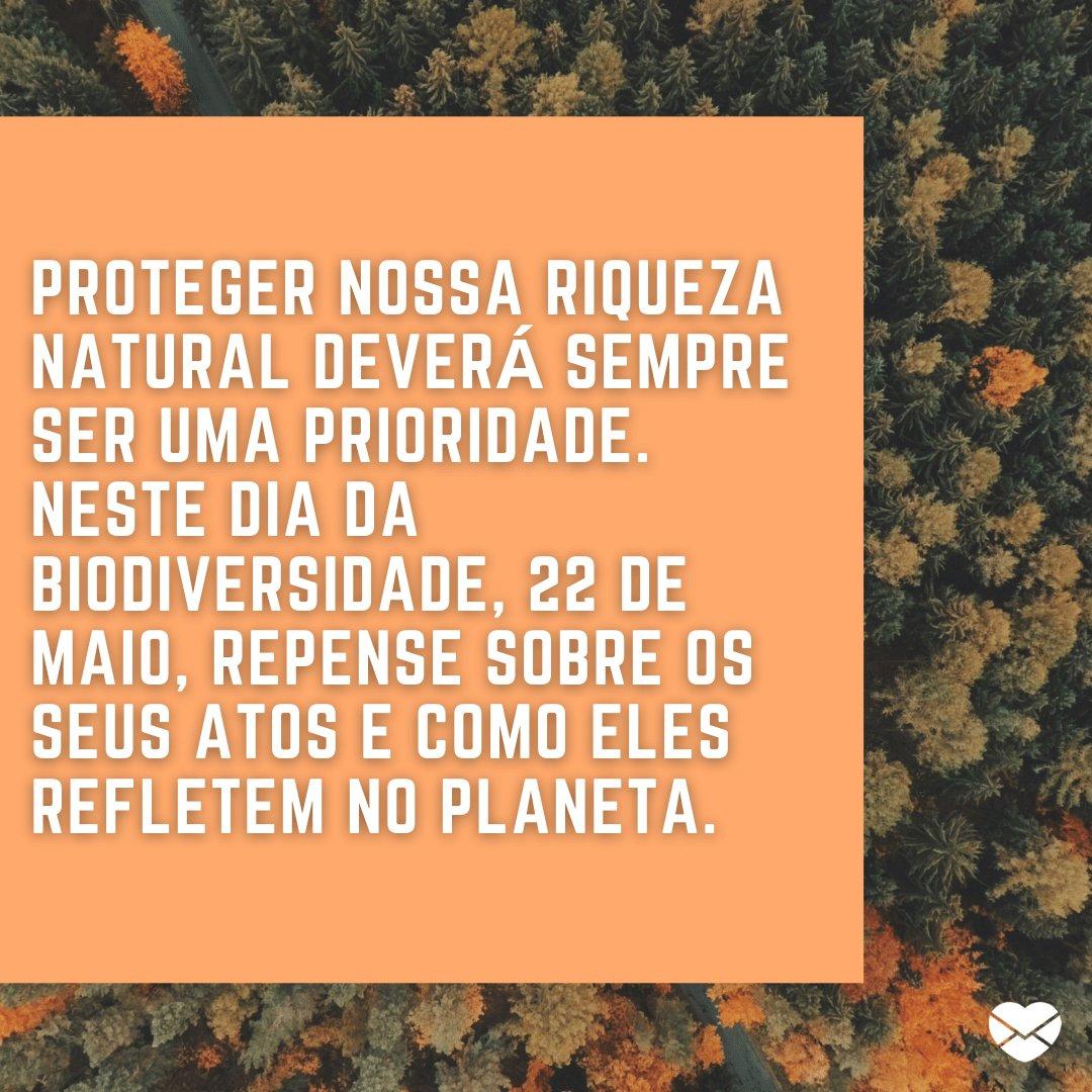 'Proteger nossa riqueza natural deverá sempre ser uma prioridade. Neste dia da biodiversidade, 22 de maio, repense sobre os seus atos e como eles refletem no planeta.' - Dia Mundial da Biodiversidade