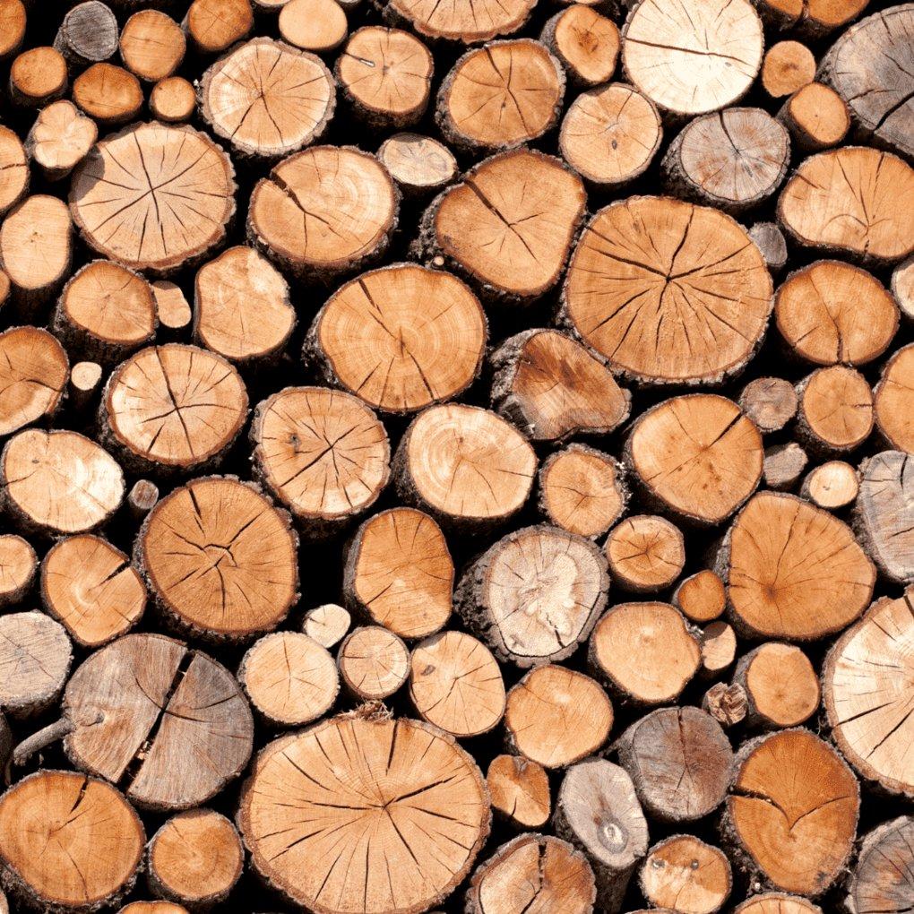Troncos de madeira empilhados