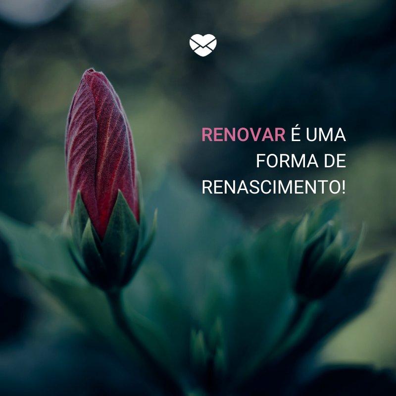 'Renovar é uma forma de renascimento! ' -Dia da Renovação Espiritual