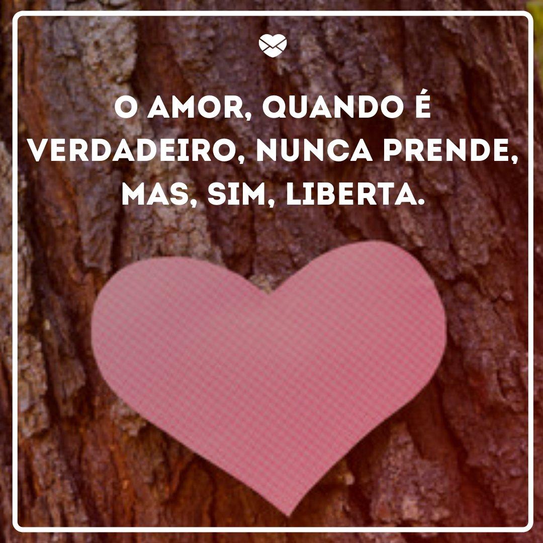 'O amor, quando é verdadeiro, nunca prende, mas, sim, liberta.' - Frases de amor para status do whatsapp