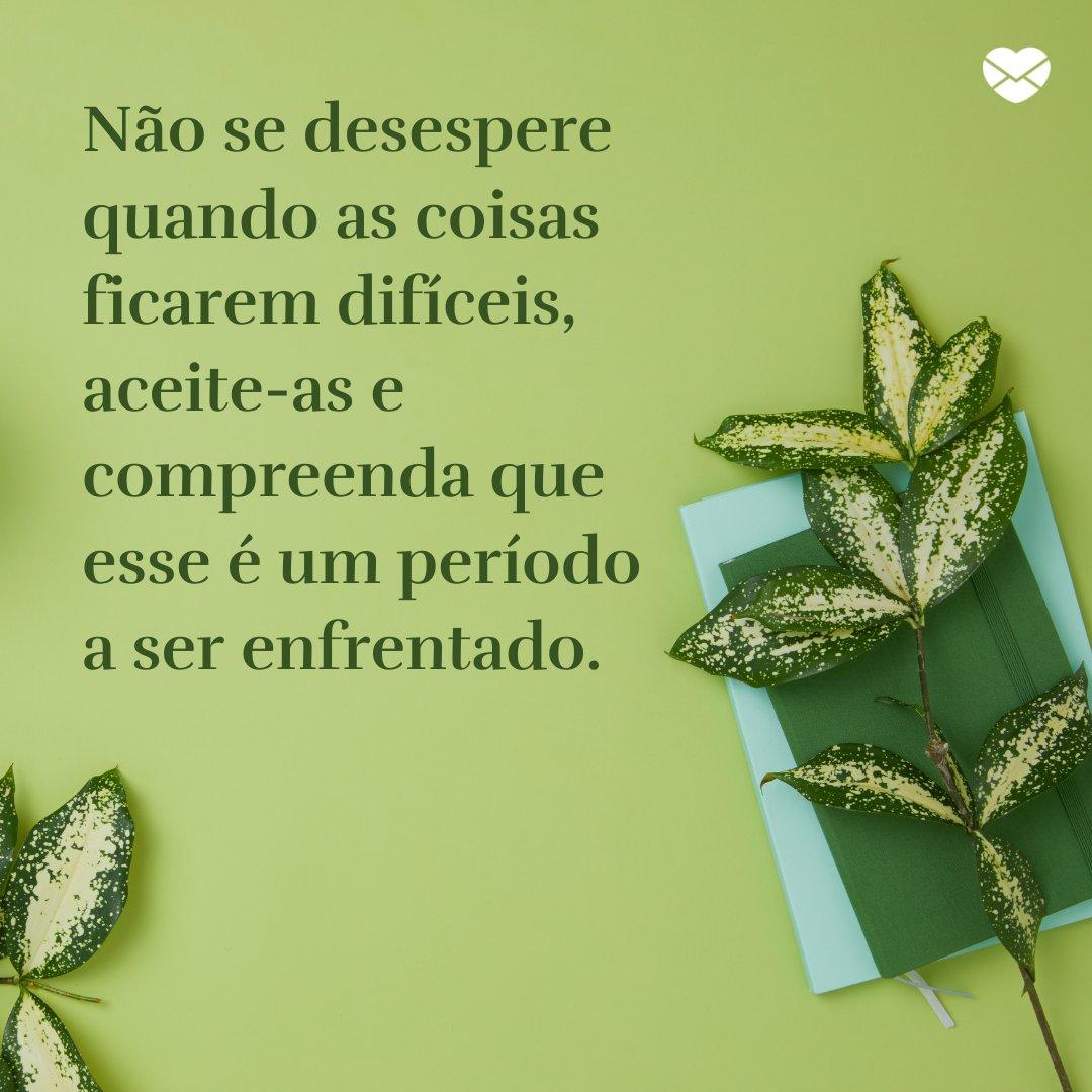 'Não se desespere quando as coisas ficarem difíceis, aceite-as e compreenda que esse é um período a ser enfrentado.' - Frases para status