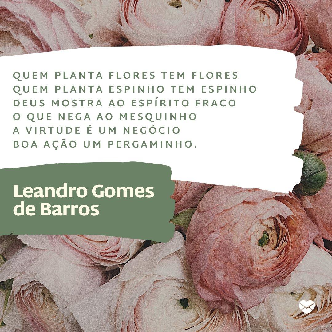 'Quem planta flores tem flores Quem planta espinho tem ...' - Mensagens de Cordéis Nordestinos