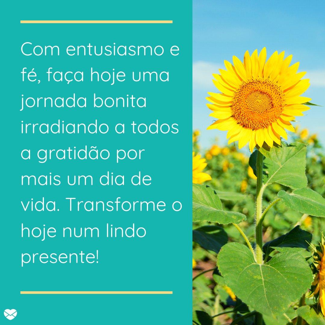 'Com entusiasmo e fé, faça hoje uma jornada bonita irradiando a todos a gratidão por mais um dia de vida. Transforme o hoje num lindo presente!' =Recados de positividade.