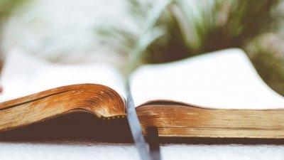 Bíblia sobre uma mesa com plantas ao fundo.