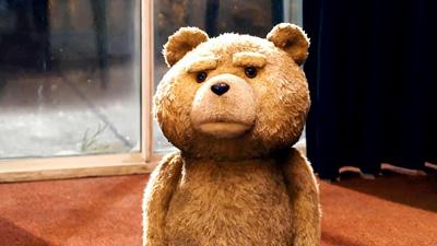 sonhar com urso dez