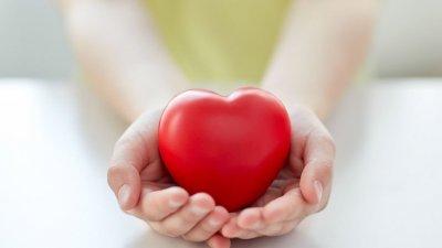 Pessoa segurando coração de plástico