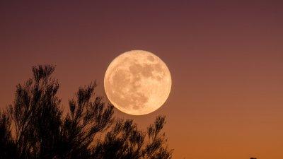 Mulher sentada em frente às luzes da cidade.