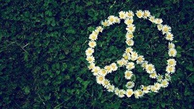 Frases Sobre Paz Interior Tranquilidade Em Palavras