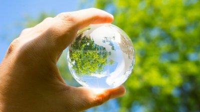 Mão segurando globo transparente em frente a árvore