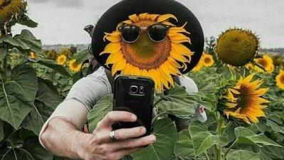 Frases Para Selfies Descreva Seus Momentos