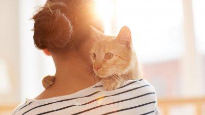 Mulher abraçando gatinho