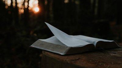 Lindos Versículos Bíblicos Medite Na Palavra De Deus