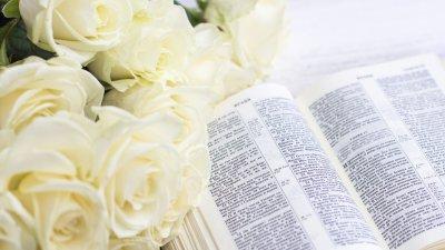 Bíblia aberta com flores brancas ao lado.