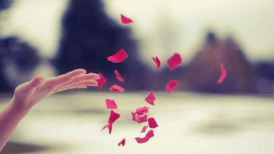 Reflexão Sobre A Vida Frases Para Dar Um Up No Seu Dia