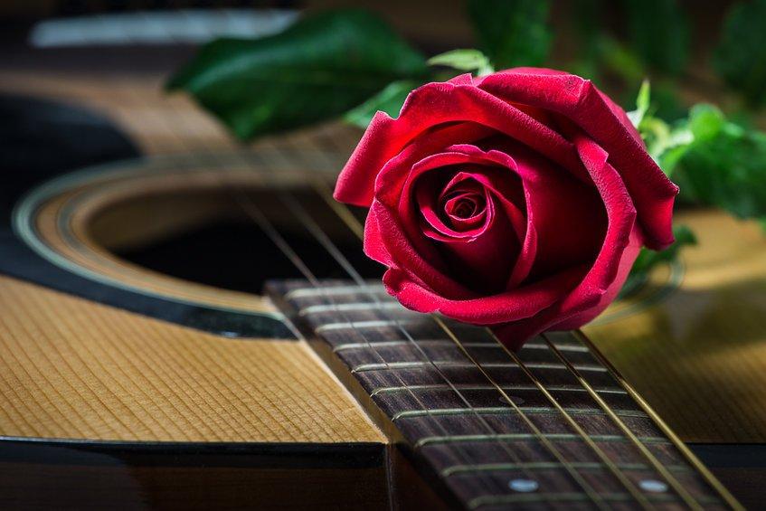 Frases de músicas de amor sertanejas